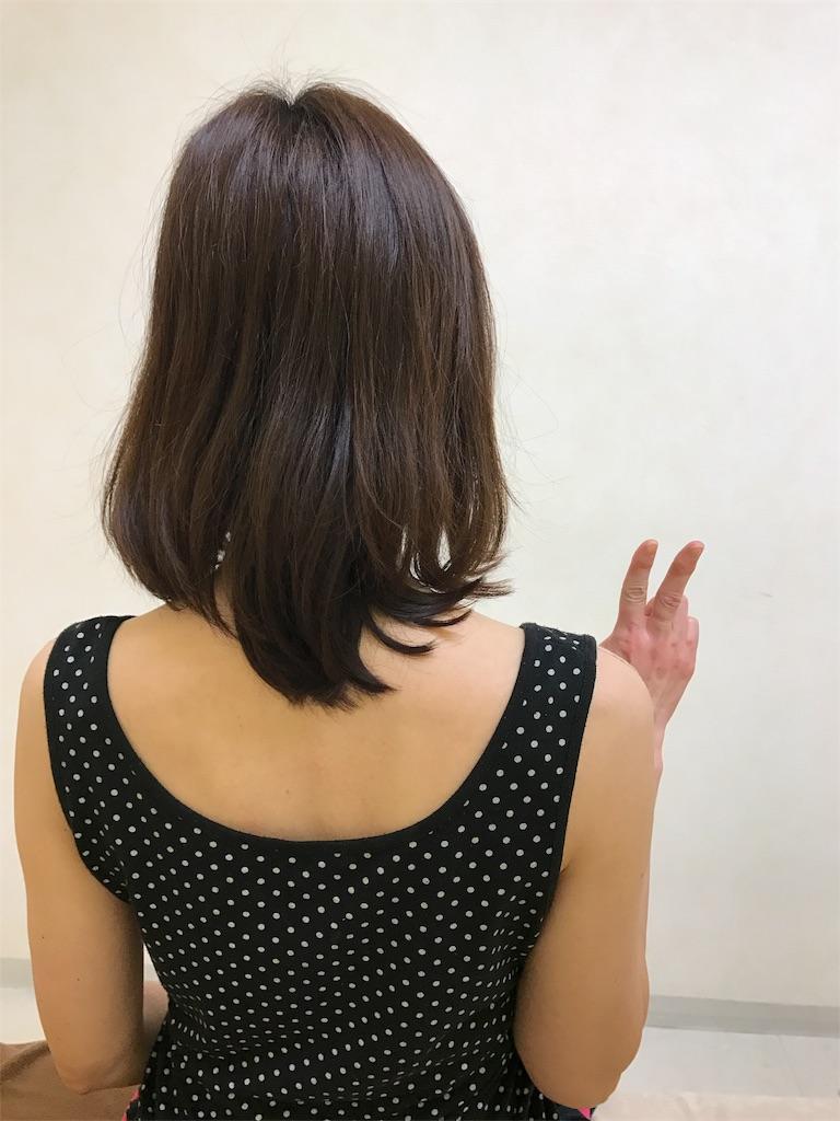 f:id:kawashima-naoya-1203346:20170217223907j:image