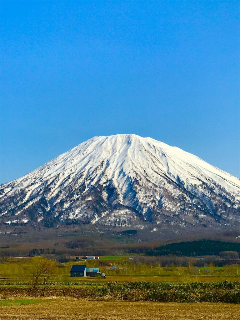 f:id:kawashima-naoya-1203346:20170506021513j:image