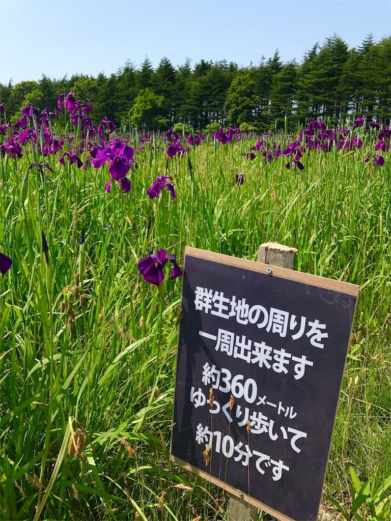 f:id:kawashima-naoya-1203346:20170705170900j:image