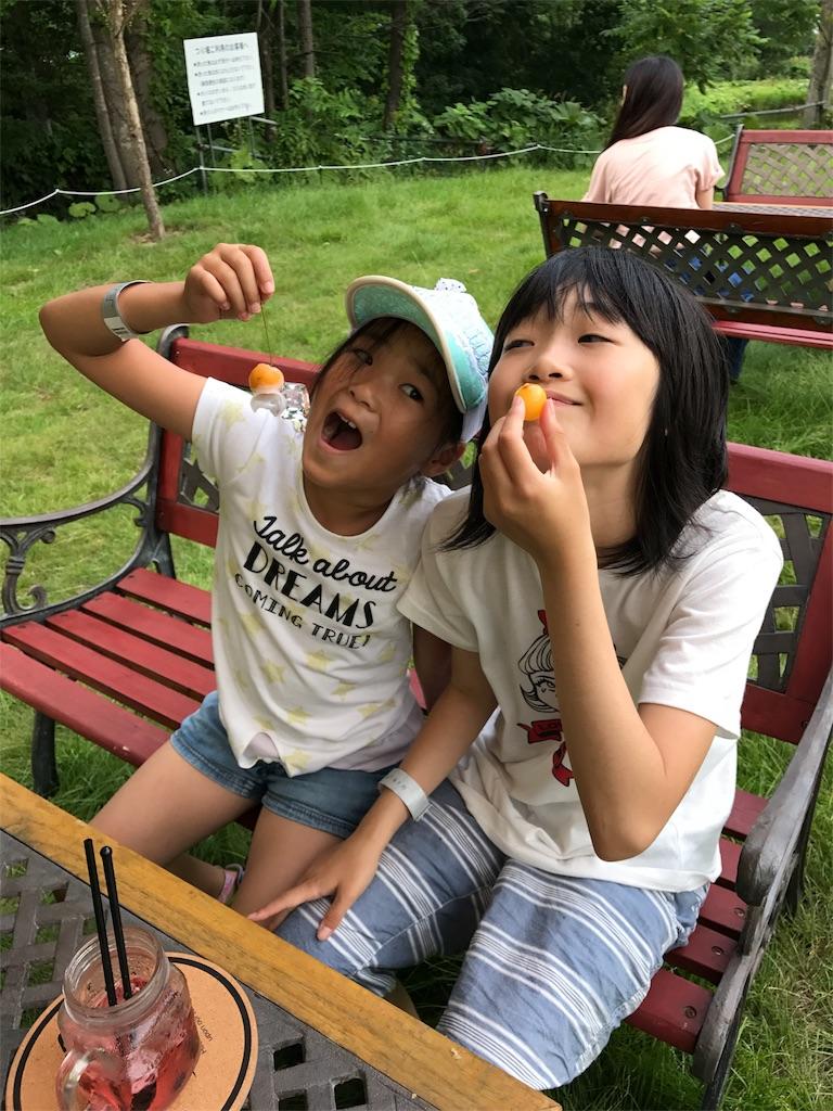 f:id:kawashima-naoya-1203346:20170802205730j:image