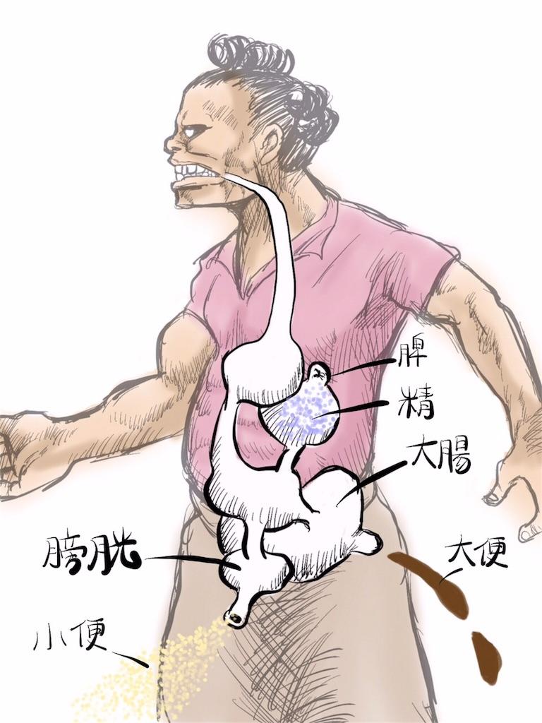 f:id:kawashima-naoya-1203346:20170806125930j:image