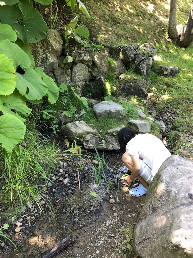 f:id:kawashima-naoya-1203346:20170816163859j:image