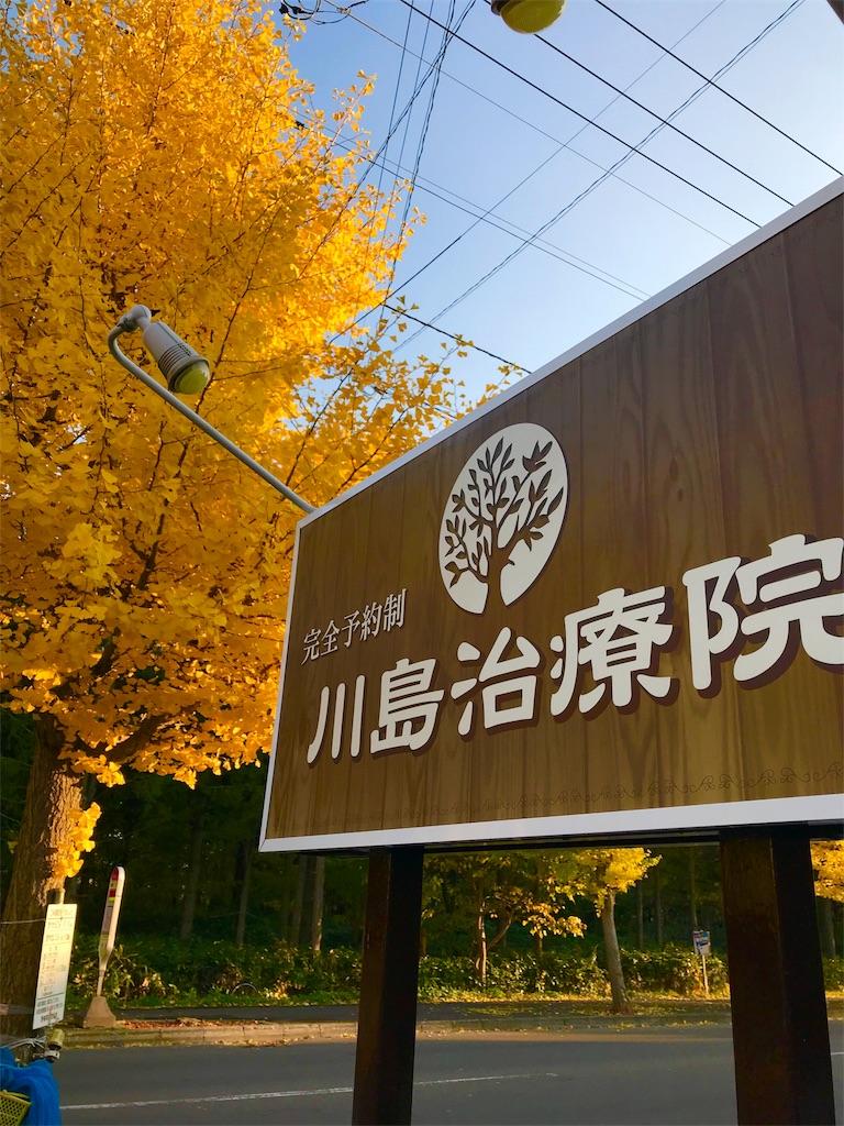 f:id:kawashima-naoya-1203346:20171101153122j:image