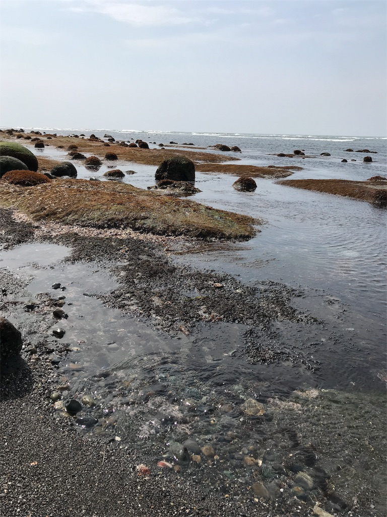 f:id:kawashima-naoya-1203346:20180422162553j:image