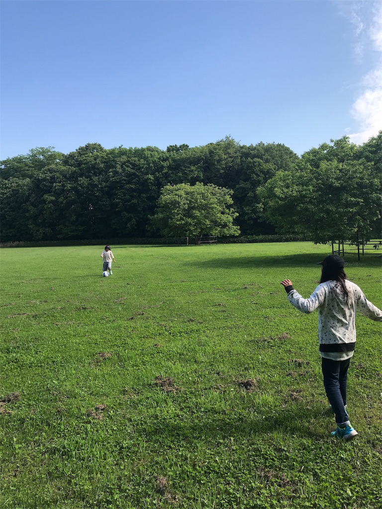 f:id:kawashima-naoya-1203346:20180624154640j:image