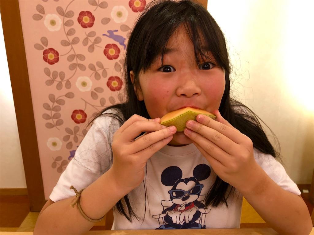 f:id:kawashima-naoya-1203346:20190106133127j:image