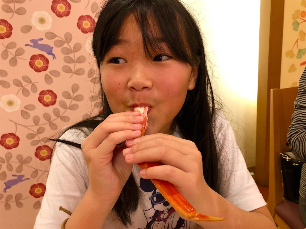 f:id:kawashima-naoya-1203346:20190106133134j:image