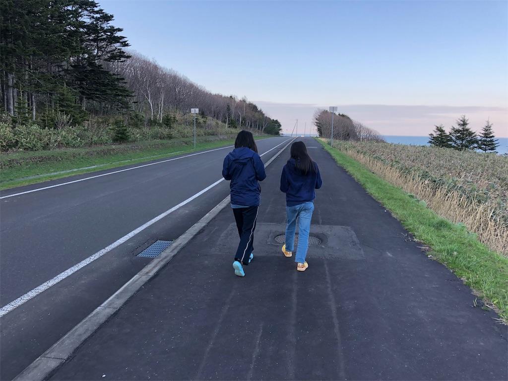 f:id:kawashima-naoya-1203346:20190504032738j:image