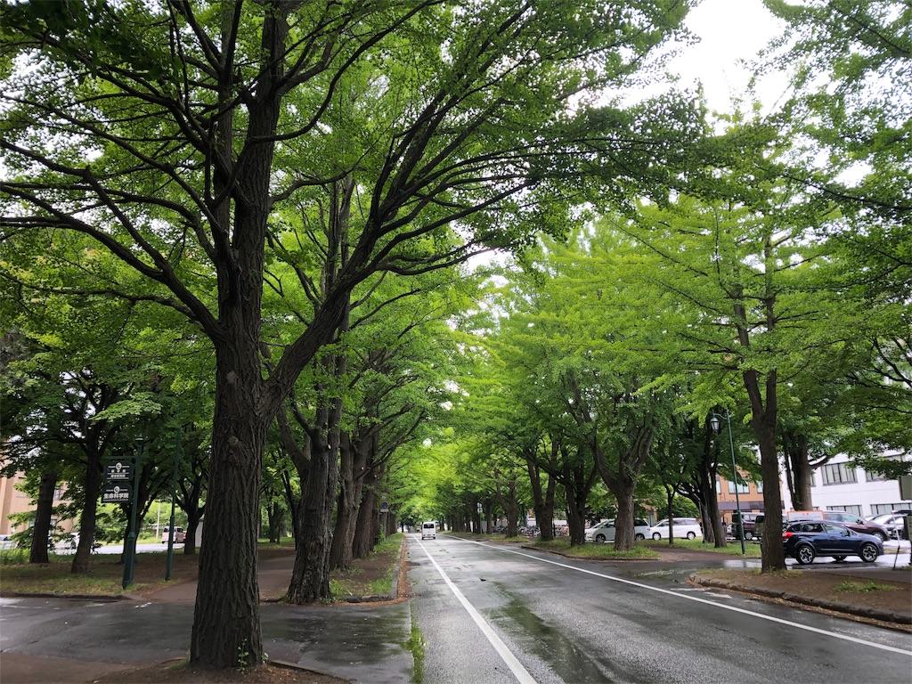 f:id:kawashima-naoya-1203346:20190619194224j:image