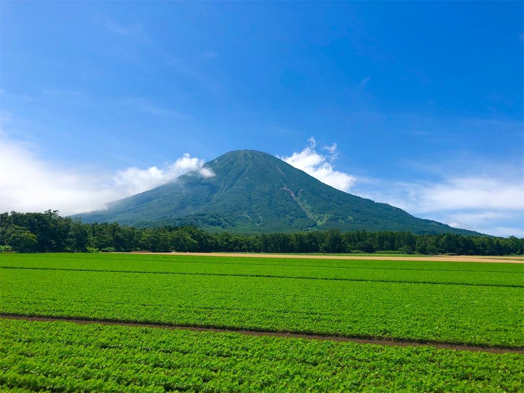 f:id:kawashima-naoya-1203346:20190726110731j:image