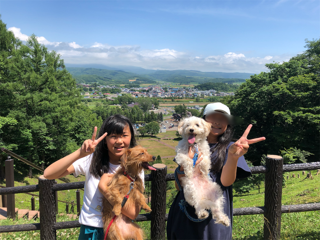 f:id:kawashima-naoya-1203346:20190726110855p:image