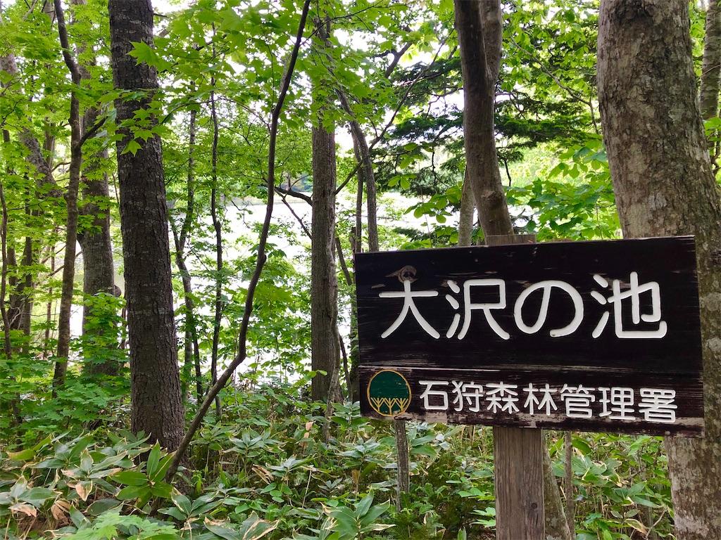 f:id:kawashima-naoya-1203346:20200603194814j:image
