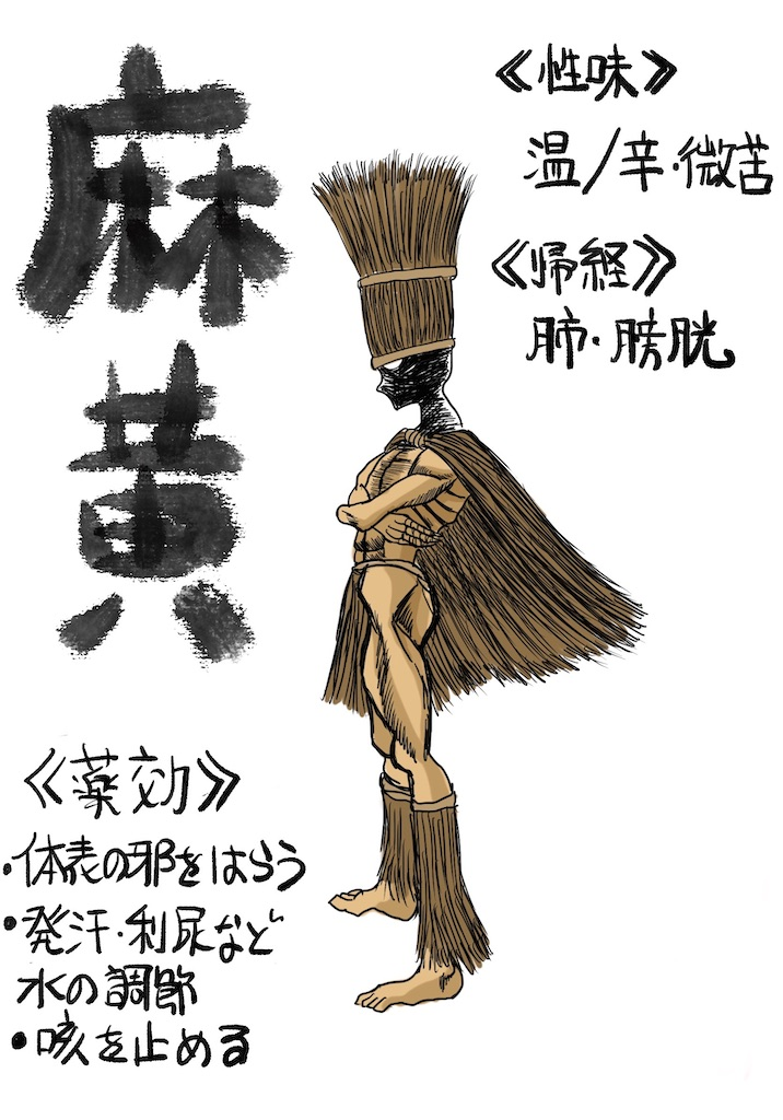 f:id:kawashima-naoya-1203346:20201208092502j:image