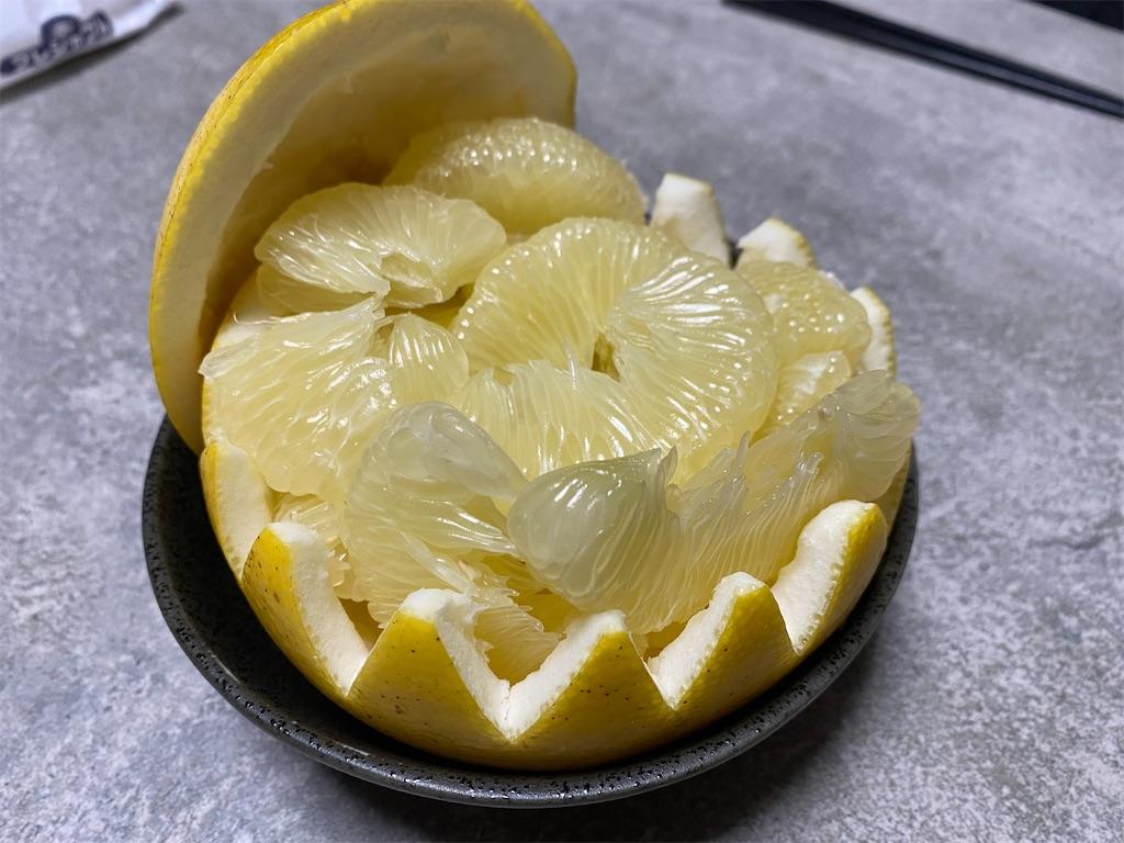 f:id:kawashima-naoya-1203346:20210221183652j:image