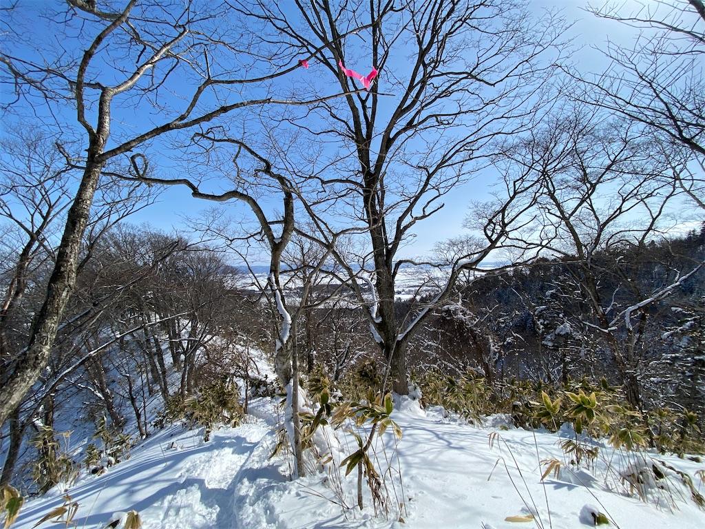 f:id:kawashima-naoya-1203346:20210228124752j:image