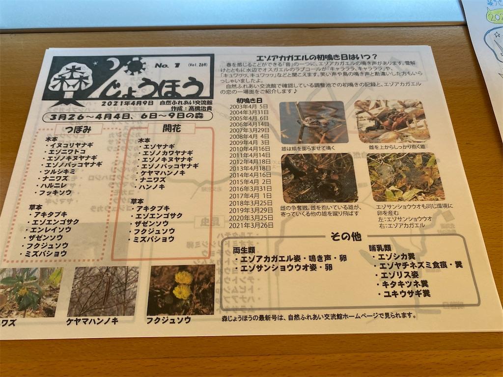 f:id:kawashima-naoya-1203346:20210412091938j:image