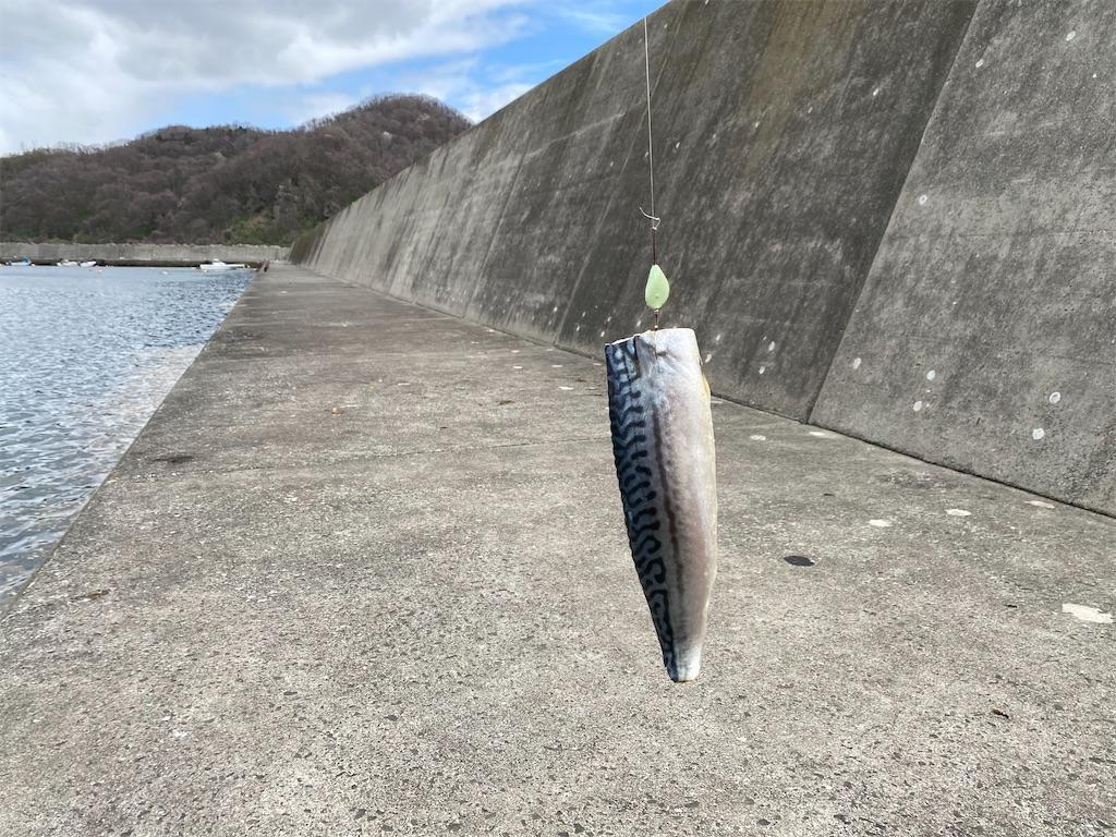 f:id:kawashima-naoya-1203346:20210502143548j:image