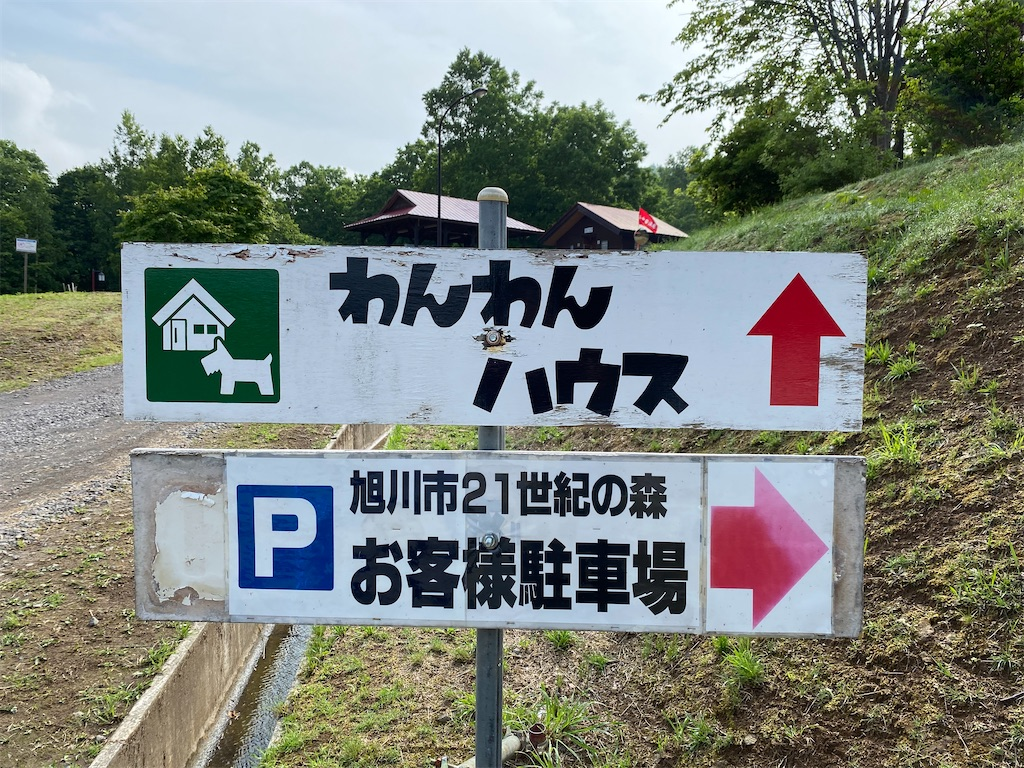 f:id:kawashima-naoya-1203346:20210704152247j:image