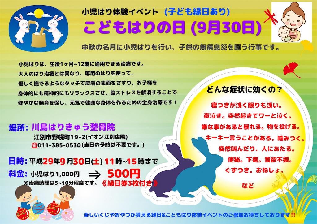 f:id:kawashima93:20170903205841j:image