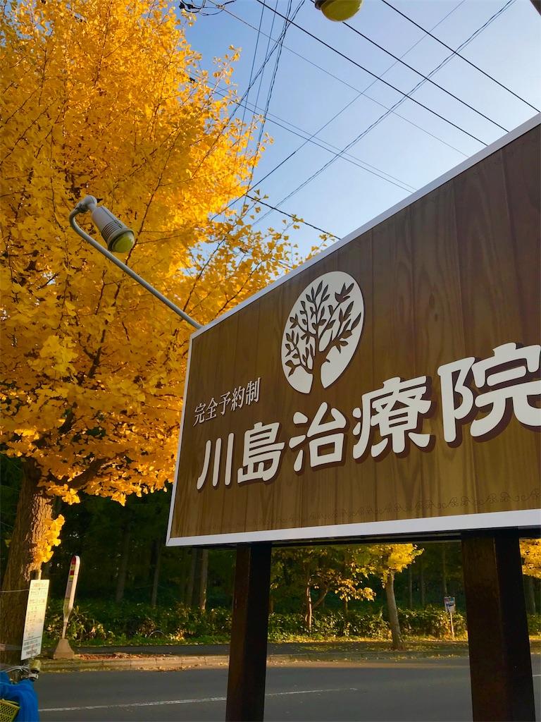 f:id:kawashima93:20180403221007j:image