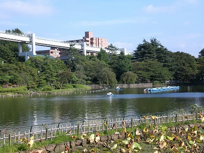 f:id:kawashimachiyo:20160401195415j:plain