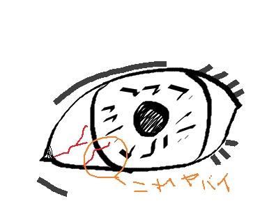 f:id:kawashimachiyo:20160401235220j:plain