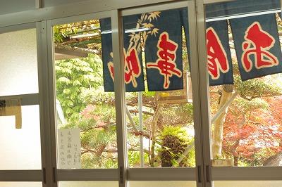 f:id:kawashimachiyo:20160404154652j:plain