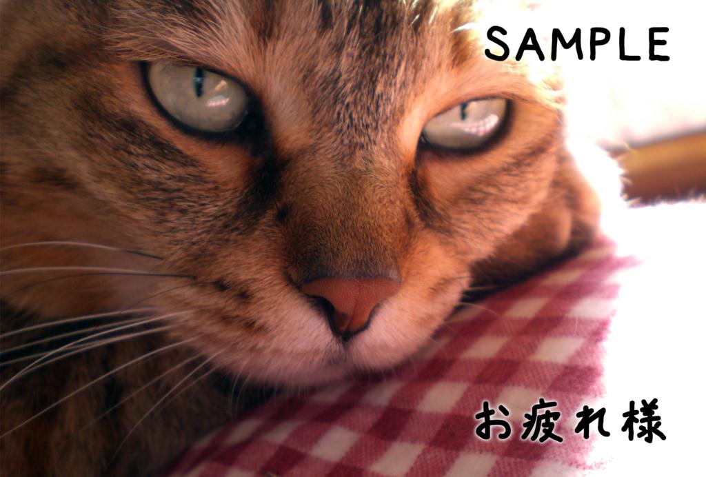 f:id:kawashimachiyo:20160729155133j:plain