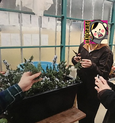 f:id:kawashimachiyo:20170418161831j:plain