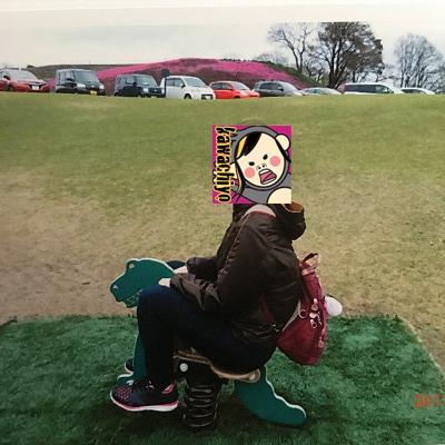 f:id:kawashimachiyo:20170418164805j:plain