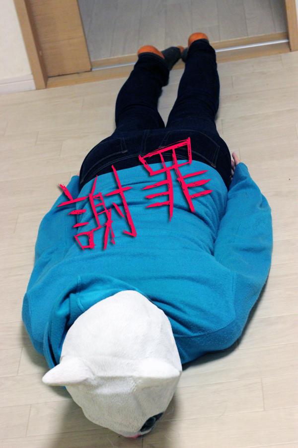 f:id:kawashimachiyo:20170420215525j:plain
