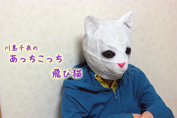 f:id:kawashimachiyo:20170420215725j:plain