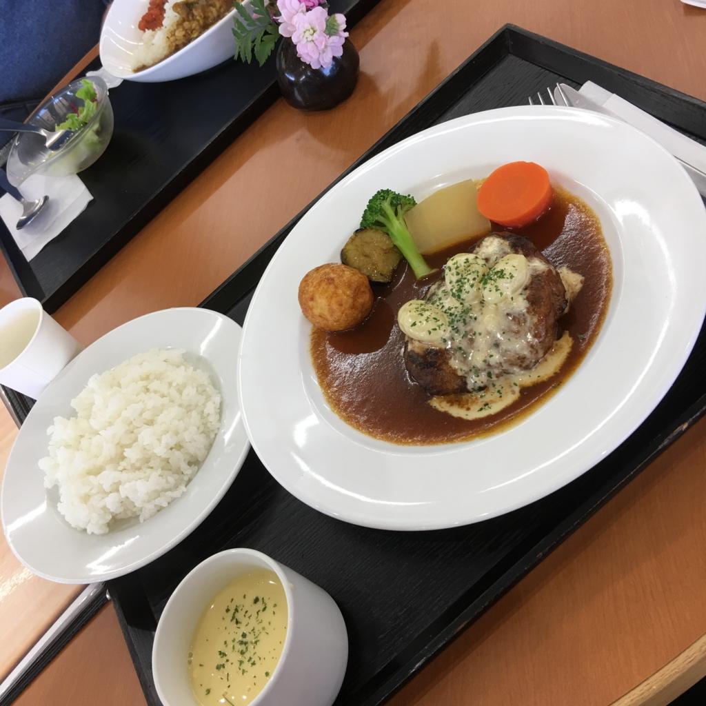 f:id:kawashimachiyo:20170425194907j:plain