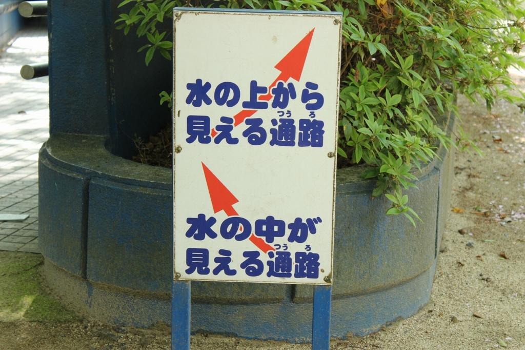 f:id:kawashimachiyo:20170509185610j:plain