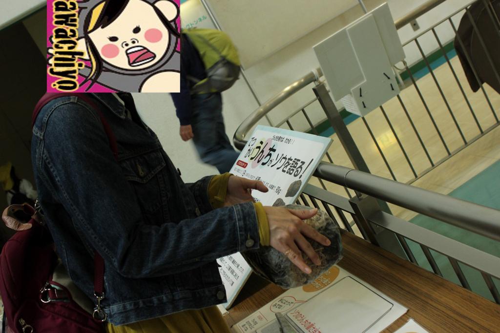 f:id:kawashimachiyo:20170509185932j:plain