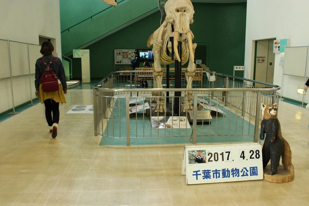 f:id:kawashimachiyo:20170509190029j:plain