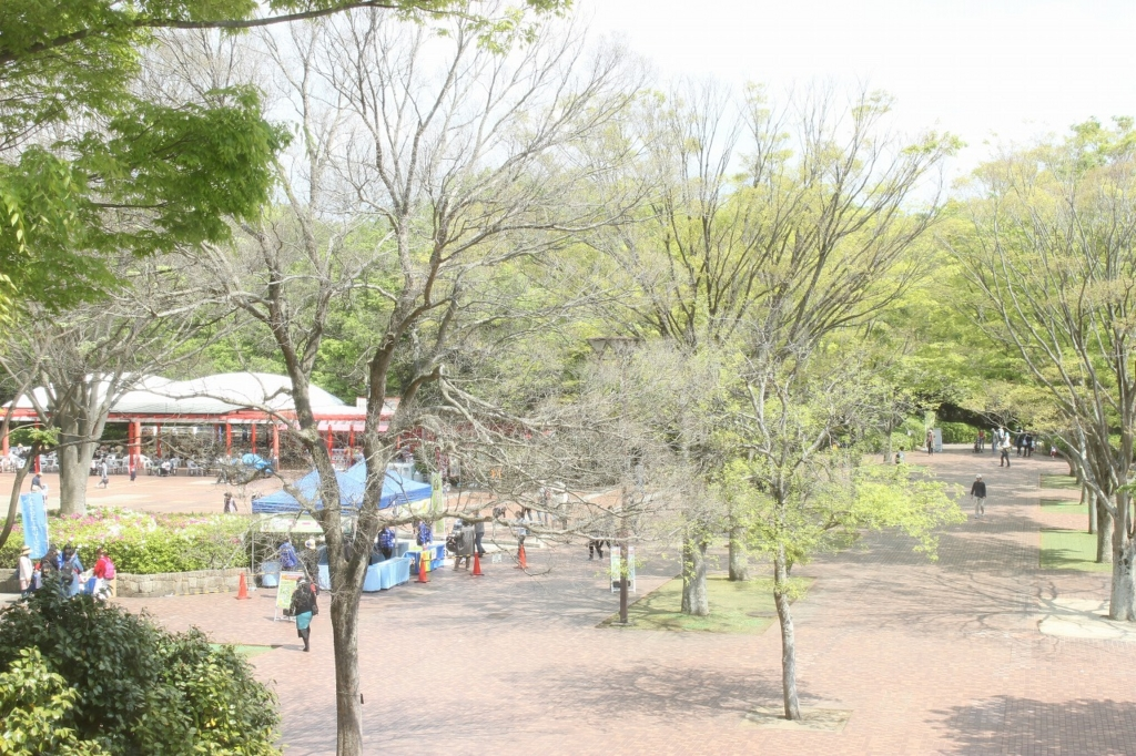 f:id:kawashimachiyo:20170511172140j:plain