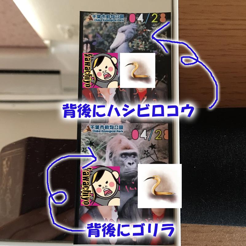 f:id:kawashimachiyo:20170511173657j:plain