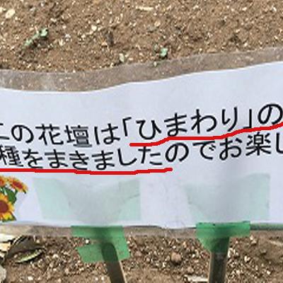 f:id:kawashimachiyo:20170512180639j:plain