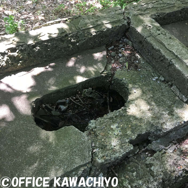 f:id:kawashimachiyo:20170522143811j:plain