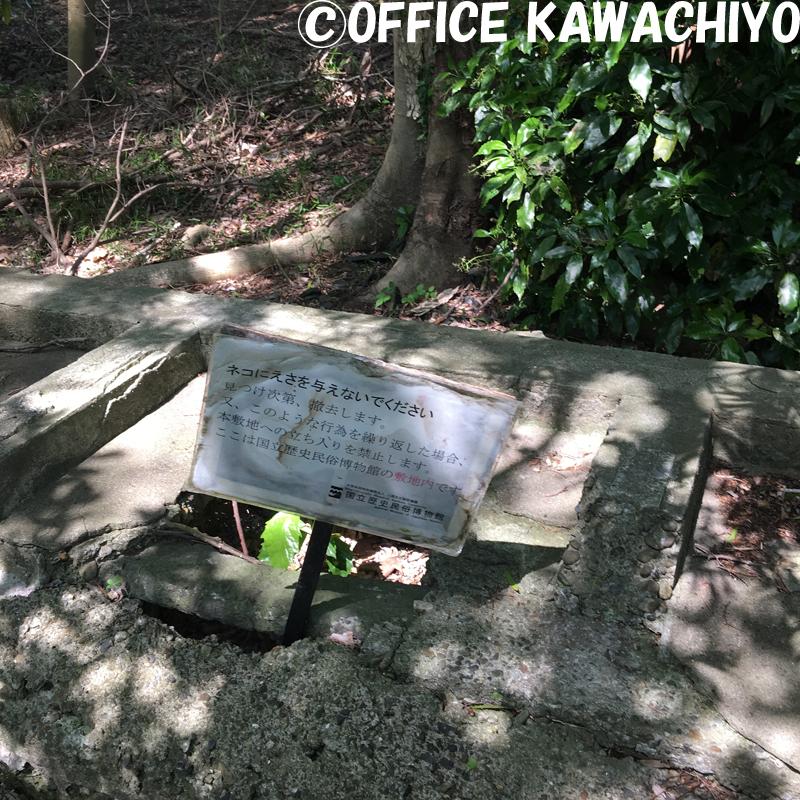 f:id:kawashimachiyo:20170522145541j:plain