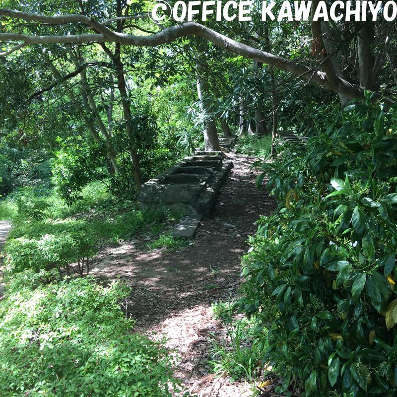 f:id:kawashimachiyo:20170522151008j:plain