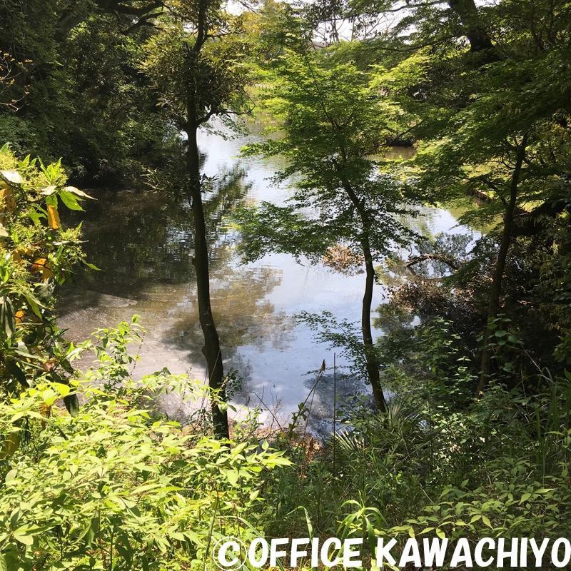 f:id:kawashimachiyo:20170522151116j:plain