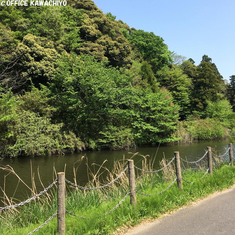 f:id:kawashimachiyo:20170522152028j:plain