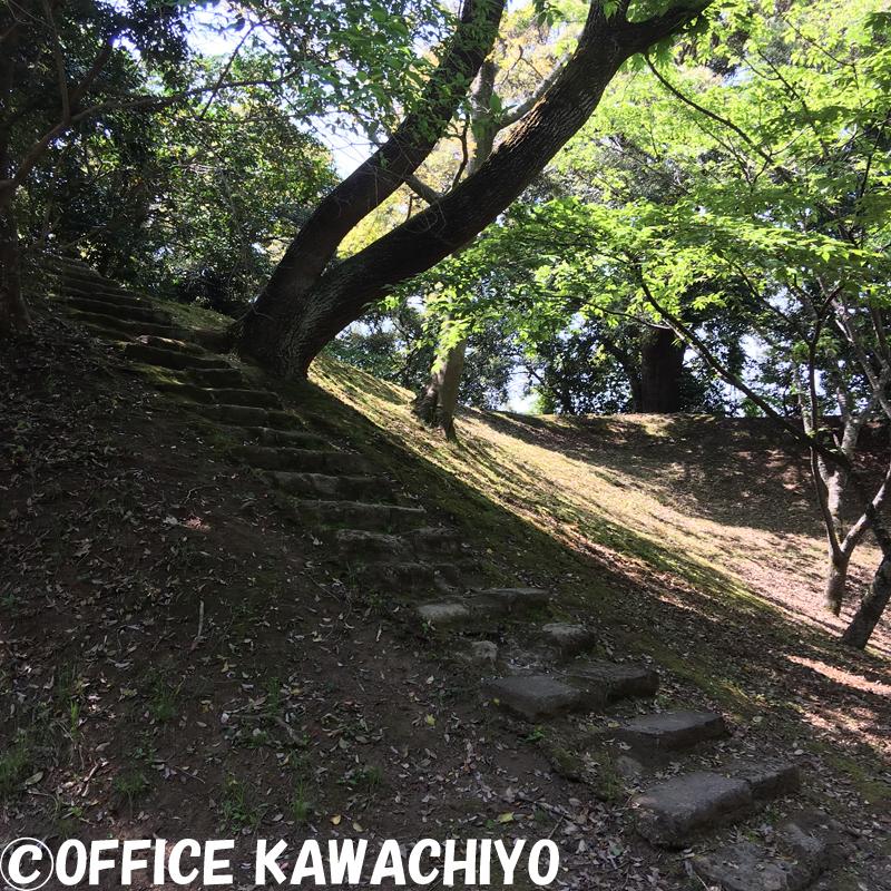 f:id:kawashimachiyo:20170522152248j:plain