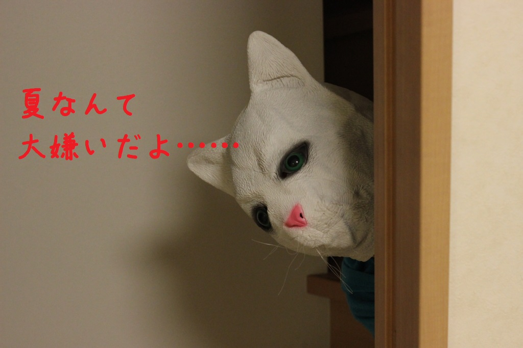 f:id:kawashimachiyo:20170708181621j:plain