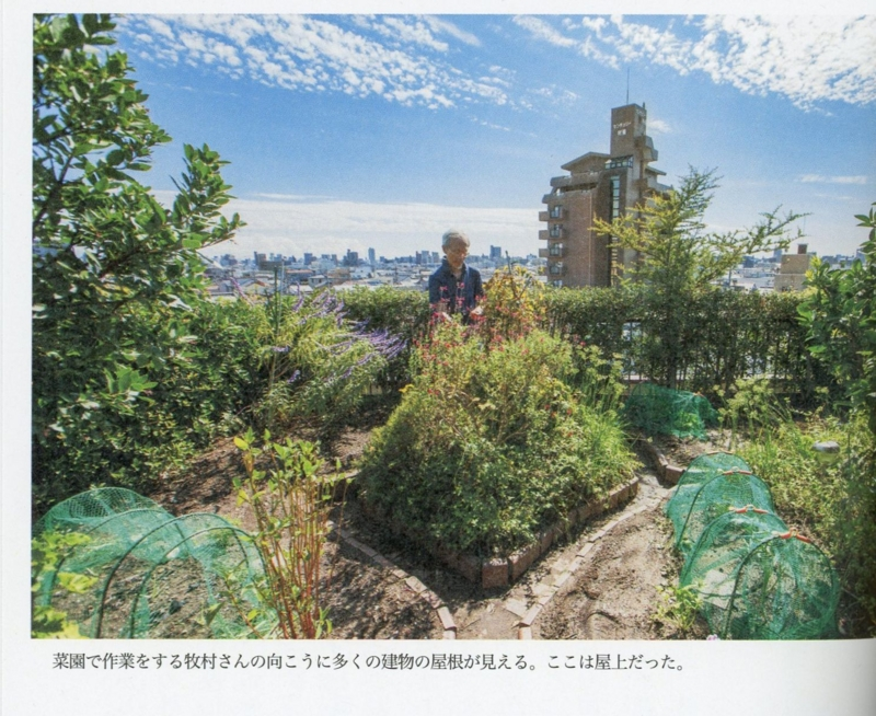 f:id:kawasimanobuo:20130807105739j:image:w640