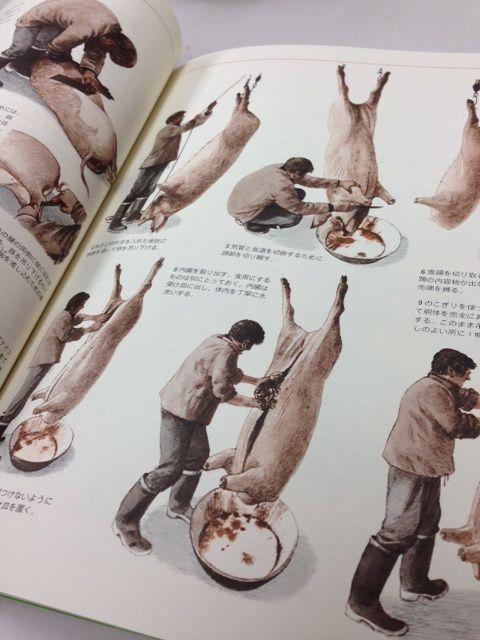 f:id:kawasimanobuo:20140612142603j:image:w460