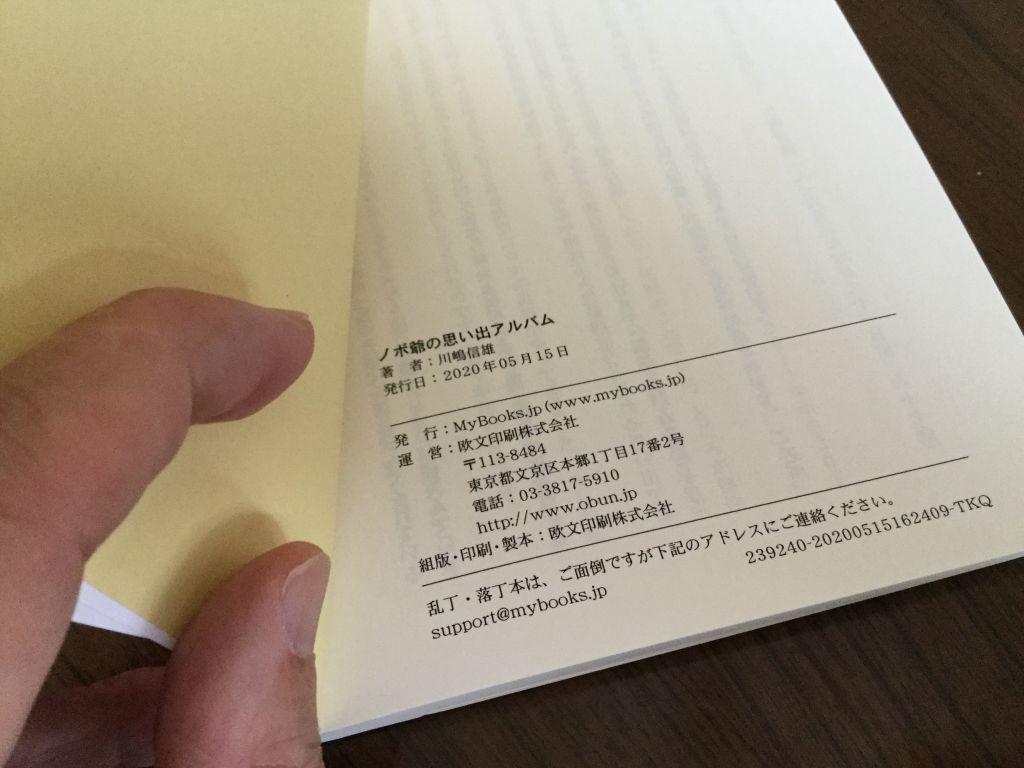 f:id:kawasimanobuo:20200529163107j:plain