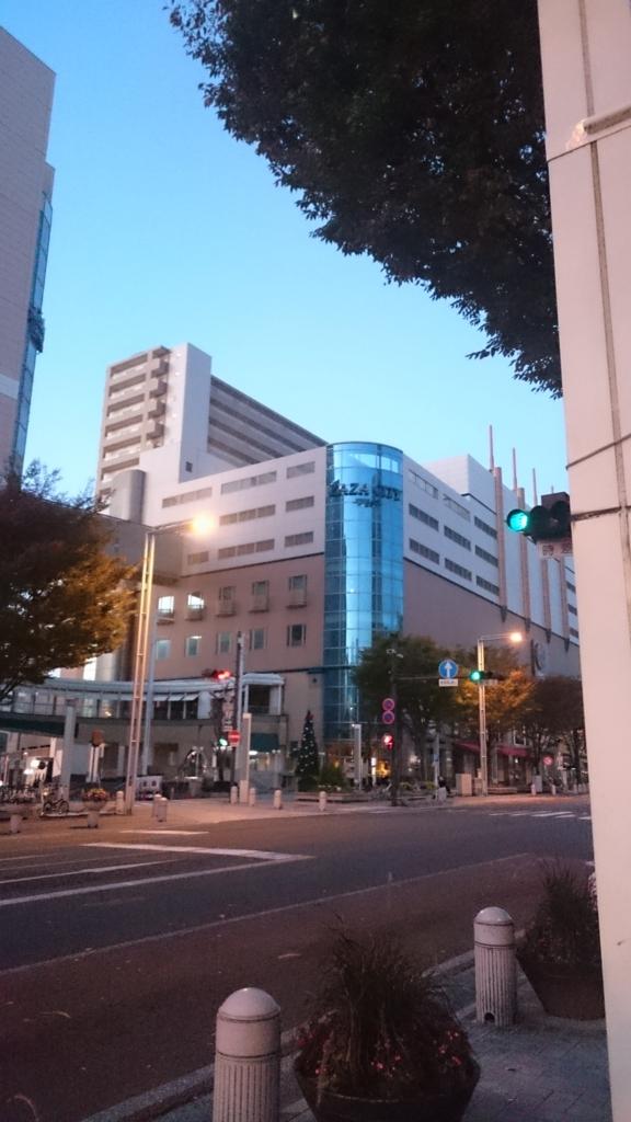 f:id:kawasumi_yume:20161112060139j:plain